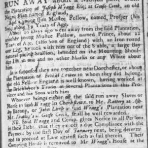 Prince - BRIL3 - SC Gazette 10-13-1739 p3.JPG