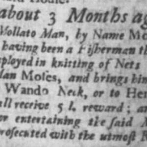 Moses - KNI1 - SC Gazette 11-5-1737.JPG