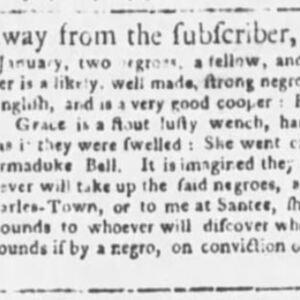 Griper - COO34 - SC Gazette - 2-24-1767.JPG