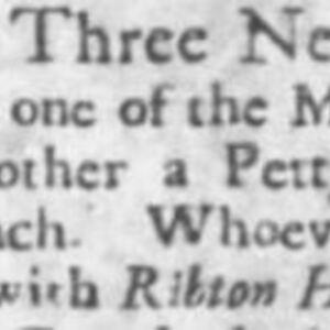 Unnamed Carpenter #14 - CAR103, SC Gazette 6-18-1741 p3.JPG