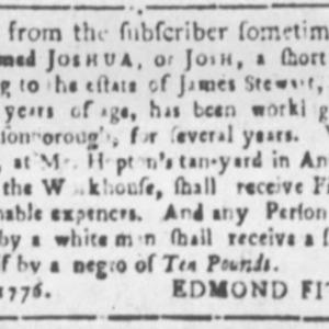 Joshua - TAN12 - SCAGG - August 21 1776.png