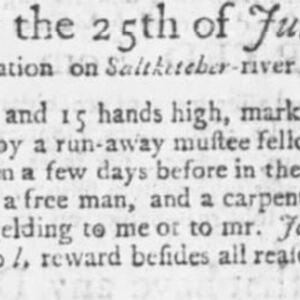 Unnamed Carpenter #25 - CAR114 - SC Gazette - 6-6-1749 p3.JPG